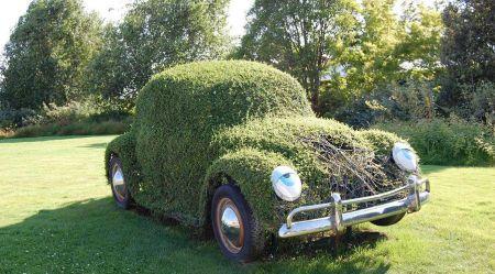 Куст в форме автомобиля
