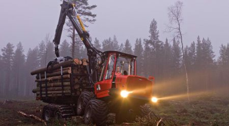 Ar ko sagatavo mežu