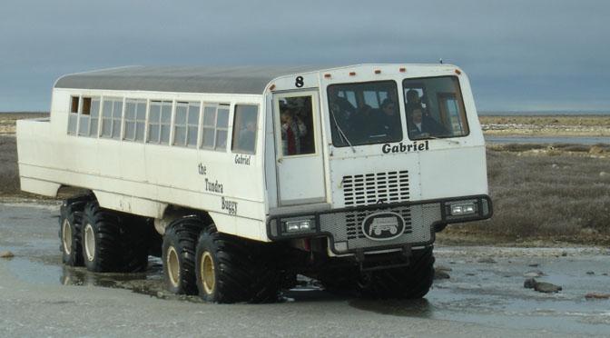 1501_Tundra Buggy